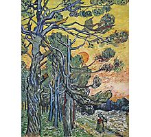 Vincent Van Gogh - Pine Trees Against An Evening Sky, 1889 Photographic Print