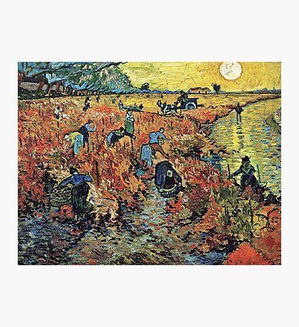 Vincent Van Gogh - Red Vineyards  Photographic Print