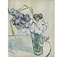 Vincent Van Gogh - Still Life Glass With Carnations, 1890 Photographic Print