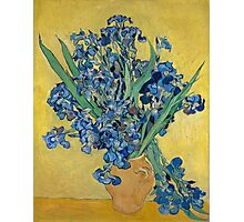Vincent Van Gogh - Still Life With Irises, 1890 Photographic Print