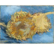 Vincent Van Gogh - Still Life With Two Sunflowers, 1887 Photographic Print