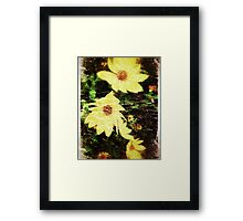 Pretty Yellow Flowers Framed Print