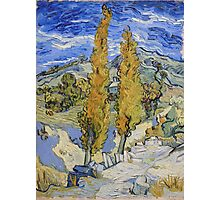 Vincent Van Gogh - Two Poplars On A Hill, 1889 Photographic Print