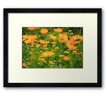 Yellow Blur Framed Print