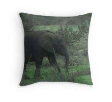 Young Elephant In Green Throw Pillow