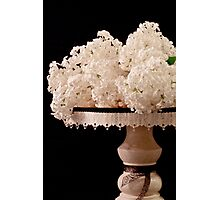 Pristine Lilacs On A Music Pedestal Photographic Print