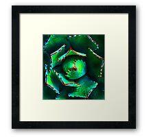 agave Framed Print