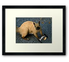 ¯`'·.¸(♥)¸.·'´ Why Yes I Can Sing A Song For U ¯`'·.¸(♥)¸.·'´ Framed Print