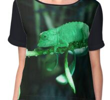 Dwarf Chameleon in Green Chiffon Top