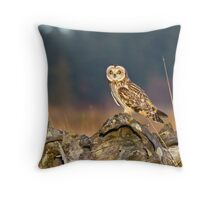 Short-eared Owl in Evening Light Throw Pillow