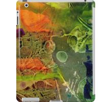 Summer Triptych III iPad Case/Skin