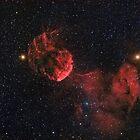 Jellyfish Nebula by Jeff Johnson