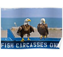 Homer's Solid Waste Workers - Bald Eagles Poster