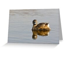 """""""Concentration"""" -- Pied-billed Grebe Greeting Card"""