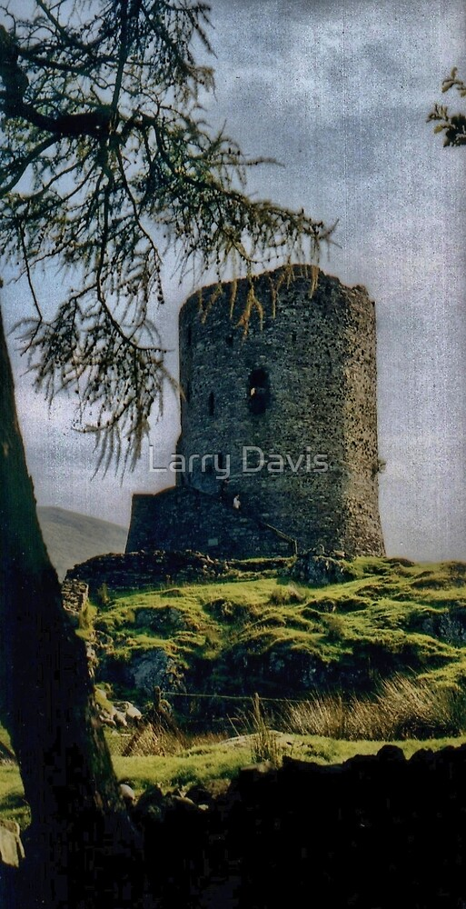 Dolbadarn Remains by Larry Lingard-Davis