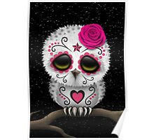 Cute Pink Day of the Dead Sugar Skull Owl Poster
