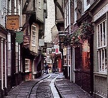 The Shambles by Larry Lingard-Davis
