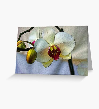 Shining Orchid  Greeting Card