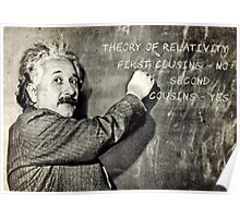 Einstein's Theory of Relativity Revised Poster