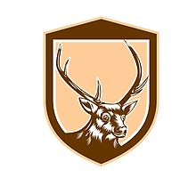 Deer Stag Buck Head Woodcut Shield by patrimonio