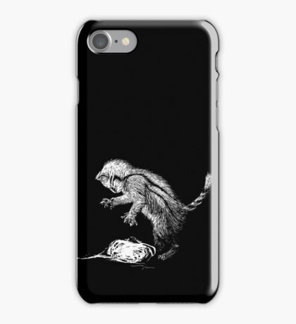 Playfulness of the House iPhone Case/Skin