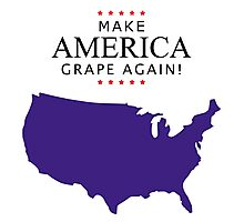 America, Let's Make Up and Make America Grape Again! Photographic Print
