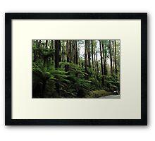Black Spur Drive Framed Print