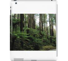 Black Spur Drive iPad Case/Skin
