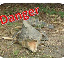Danger by AussieWildLife