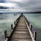 Sea to Shore by Karen E Camilleri