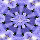 Irises Dance in a Fairy Ring by SummerJade