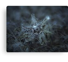 Snowflake photo - Beauty of imperfection Canvas Print