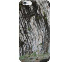 Utah Canyon Realistic Abstract  iPhone Case/Skin