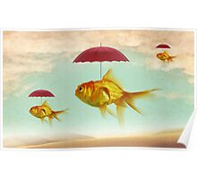 fish umbrellas Poster