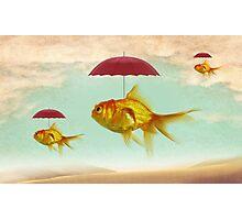 fish umbrellas Photographic Print