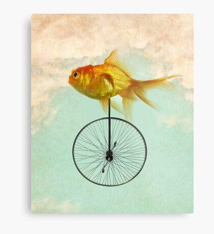 unicycle goldfish Metal Print