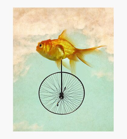 unicycle goldfish Photographic Print