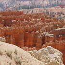 Bryce Canyon Inspiration Point by clizzio