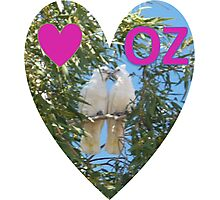 Love OZ Photographic Print