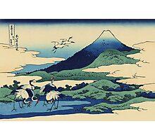 Hokusai Katsushika - Umezawa in Sagami Province Photographic Print