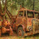 Rusty Trusty & the Bulldozer by Michael Matthews