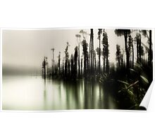 The Rainforest Waltzes With The Morning Mist Poster