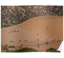 Pink Coral Sand Dune Poster