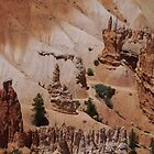 Bryce Canyon Colors  by clizzio