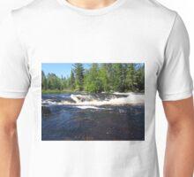 Raging Portage Unisex T-Shirt