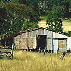 The Farm Shed by sandysartstudio