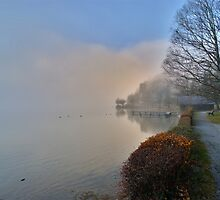 Shore in the Fog by Daidalos