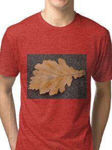 Fallen & Free Tri-blend T-Shirt