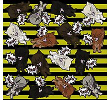 Swearwolves - yellow Photographic Print