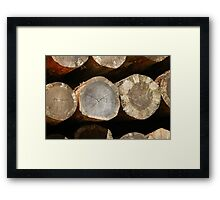 sawn trunk Framed Print
